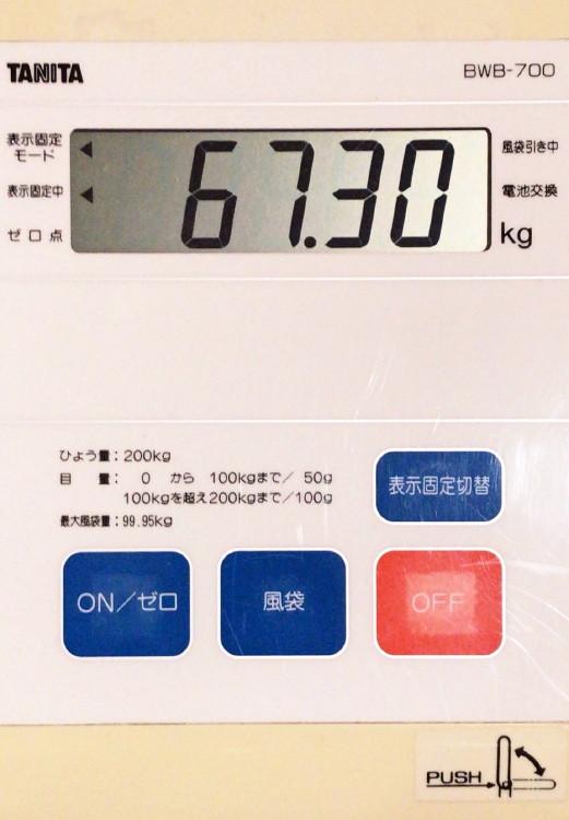 4kgオーバー