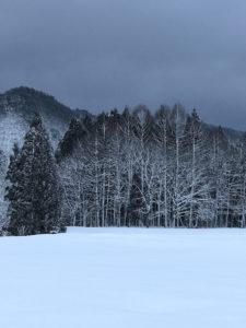 真冬の安比高原